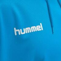 Hummel Herren-Kapuzensweat hmlPromo Poly Hoodie 208317